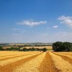 Prezentacija Zakona o poljoprivrednom zemljištu