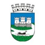 Poziv gospodarskim subjektima za obavljanje poslova za potrebe Grada Siska