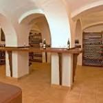 Javni natječaj za podnošenje prijava za dodjelu sredstava iz Nacionalnog programa pomoći sektoru vina