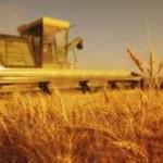 """IPARD natječaj za Mjeru 101 """"Ulaganja u poljoprivredna gospodarstva u svrhu restrukturiranja i postizanja standarda Zajednice"""""""