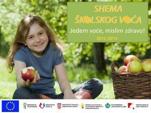 Shema_skolskog_voca_-_AMH_01