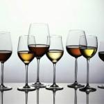 Sektor vina – Javni natječaj